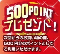500ポイントプレゼント!